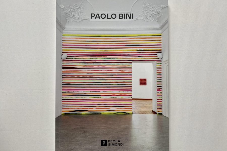 PAOLO BINI | Scenari emotivi